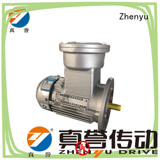 Zhenyu low cost single phase electric motor for wholesale for metallurgic industry