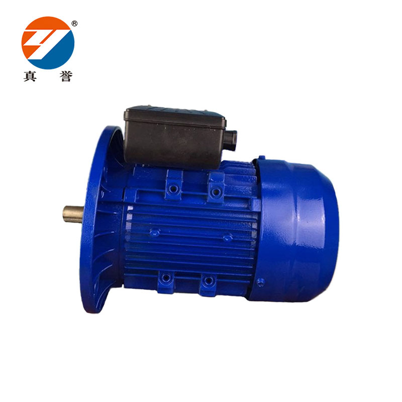 Zhenyu hot-sale single phase motor for transportation-1