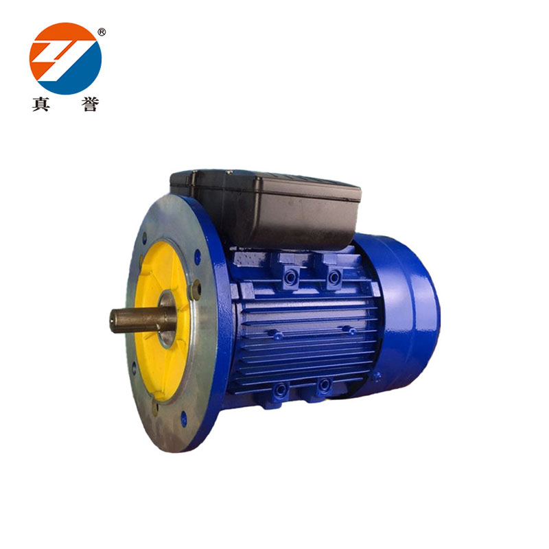 Zhenyu eco-friendly single phase ac motor for wholesale for machine tool-2