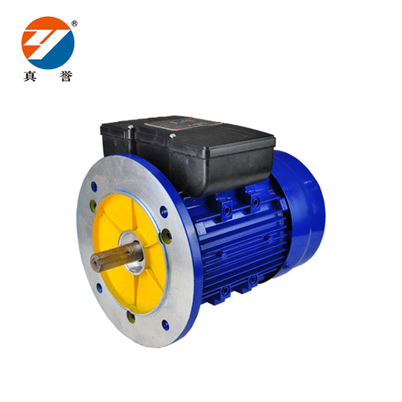 YC ac synchronous single Electric Motor