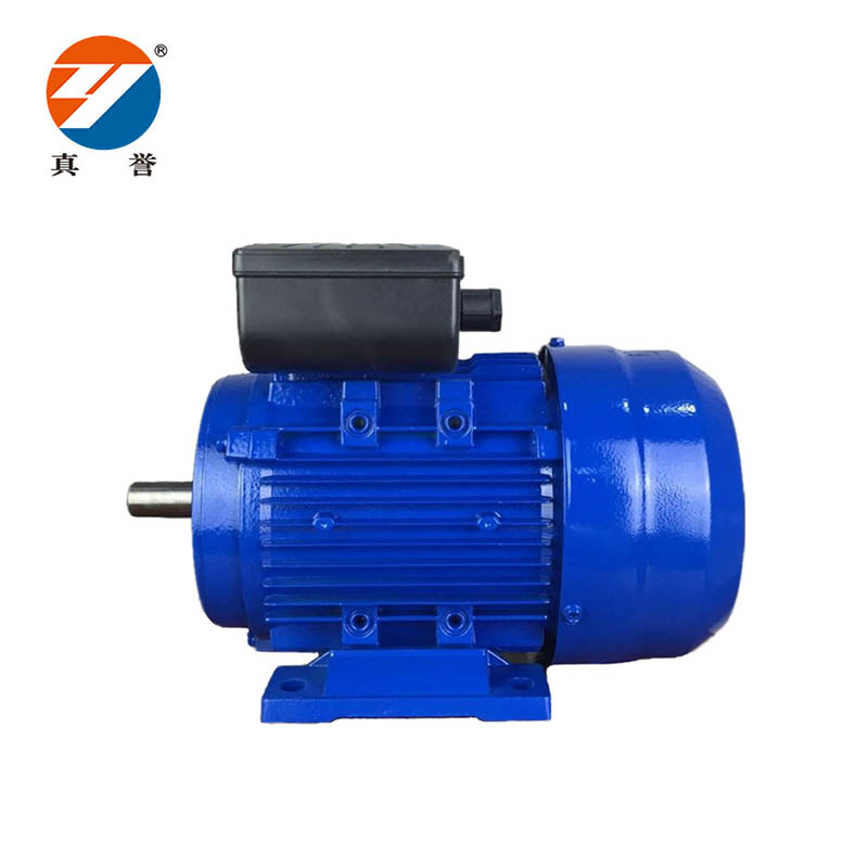 Zhenyu hot-sale 3 phase motor inquire now for dyeing-1
