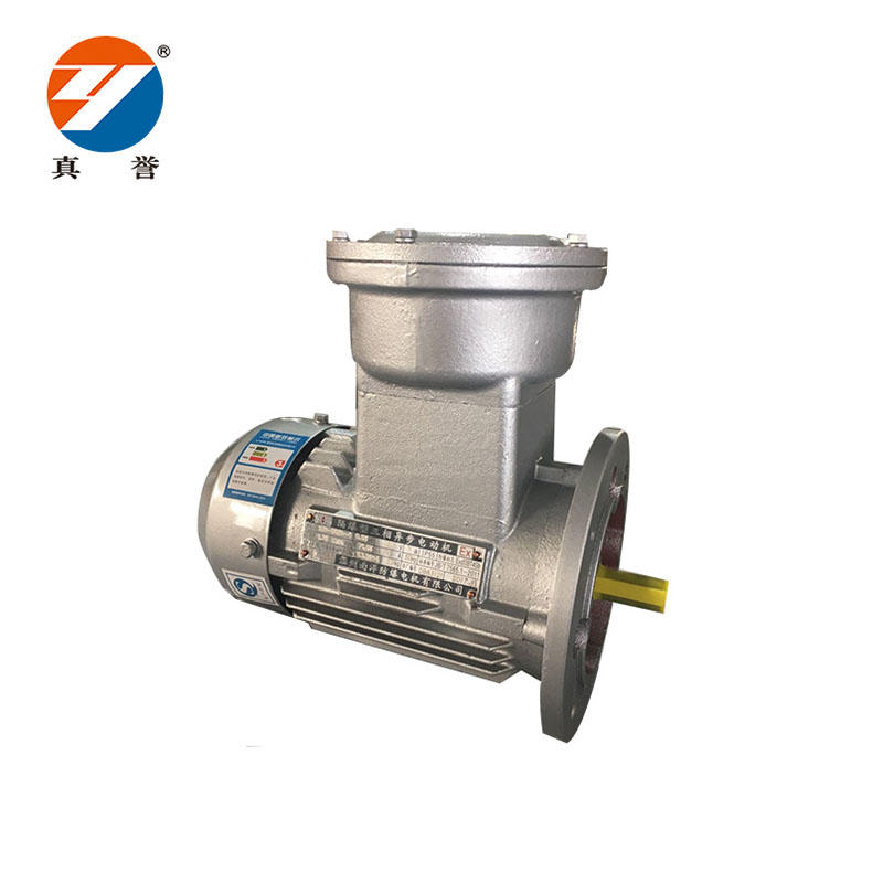 New design Explosion-proof electric pump motors  Quick Details