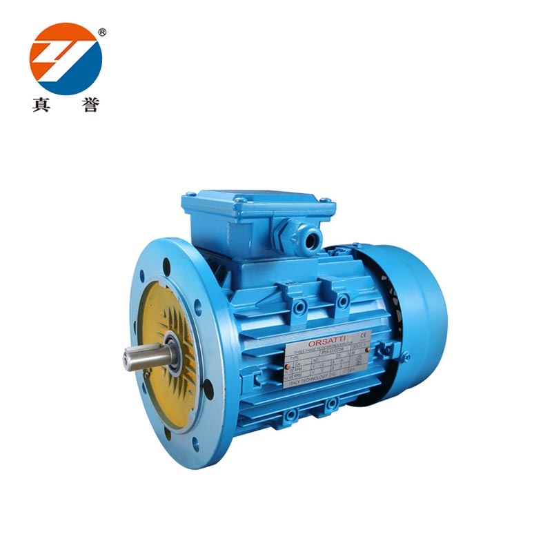 Zhenyu ac 3 phase motor for wholesale for metallurgic industry-1