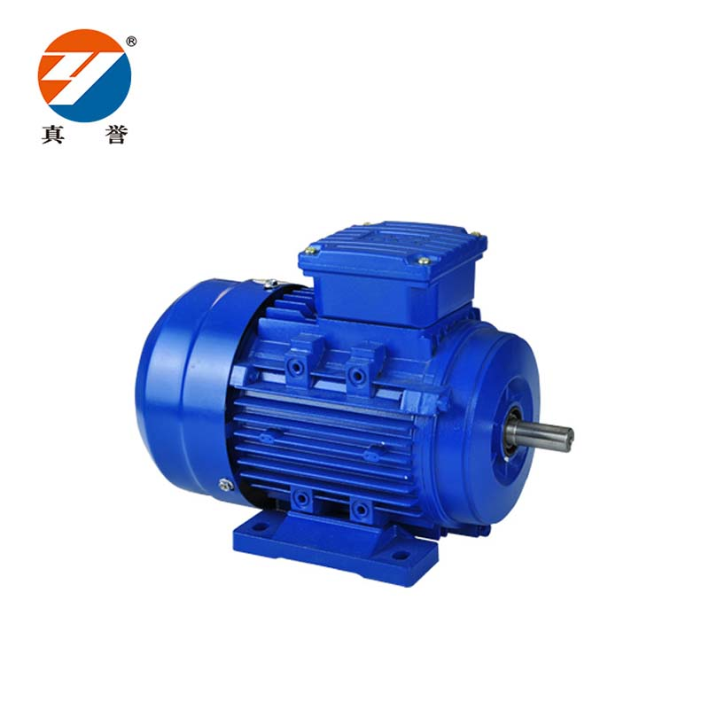 Zhenyu details electrical motor check now for dyeing-2
