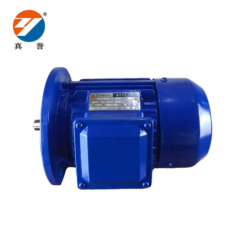 Zhenyu details electrical motor check now for dyeing-1
