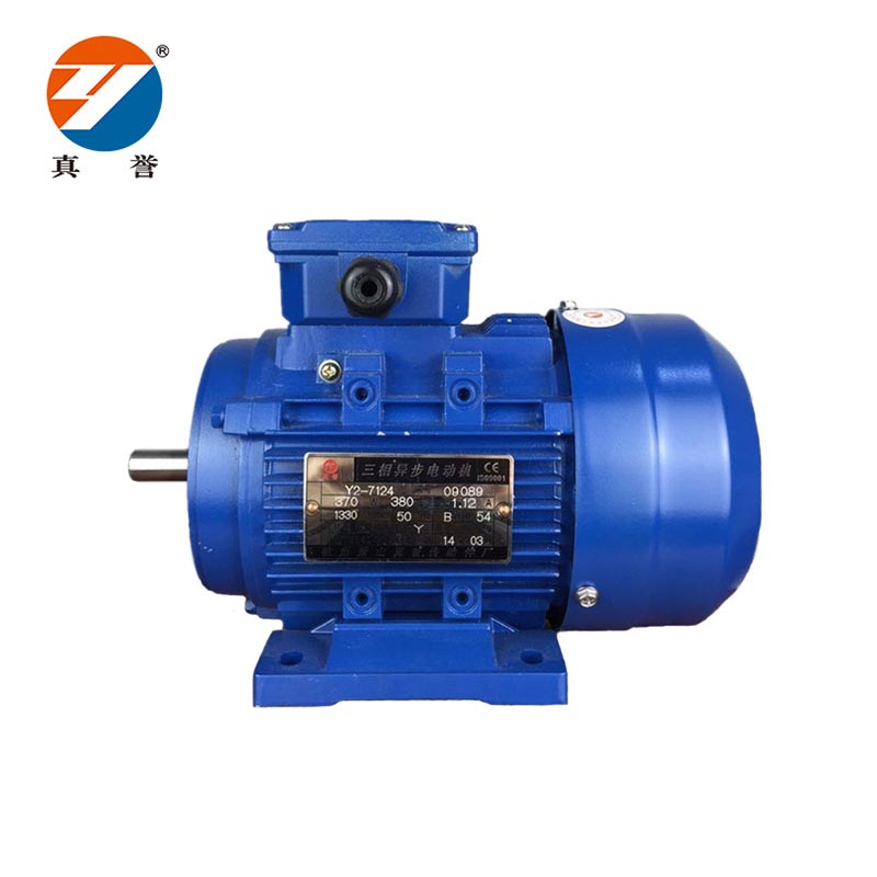 Zhenyu fine- quality ac single phase motor for textile,printing-2