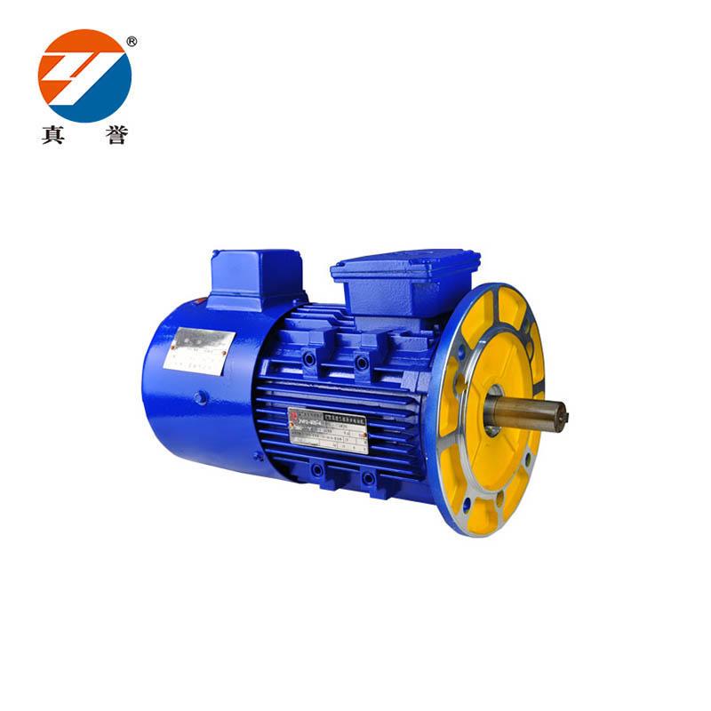 YVP series three-phase asynchronous motor