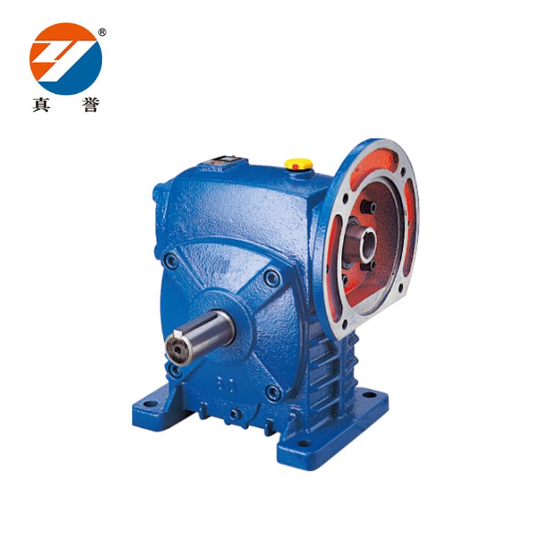 Zhenyu machine electric motor speed reducer China supplier for light industry-1