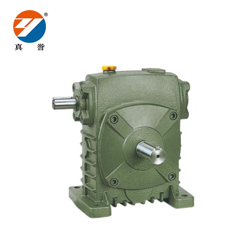 speed reducer motor wpea for lifting-2