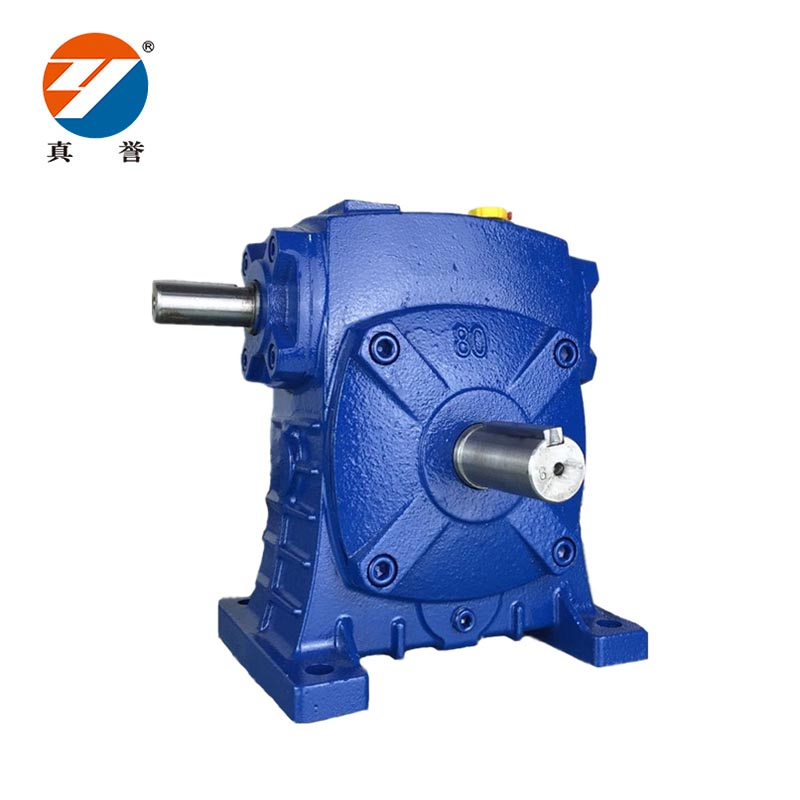 speed reducer motor wpea for lifting-1