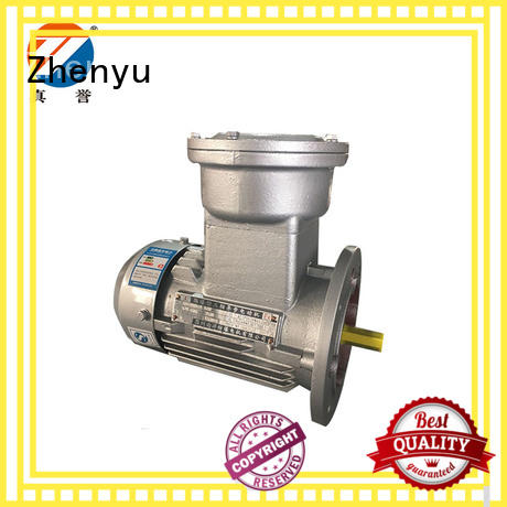 ye2 cheap electric motors for wholesale for chemical industry Zhenyu
