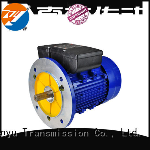 YC ac synchronous single Electric Motor