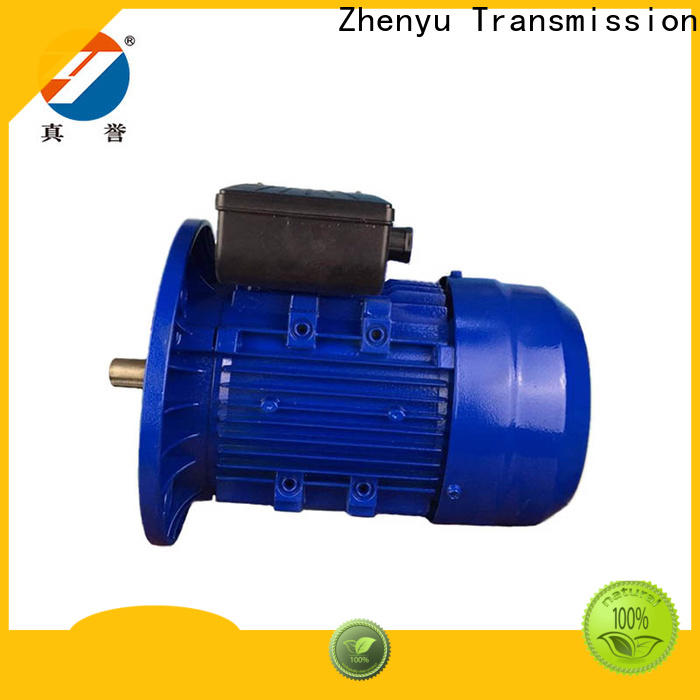 Zhenyu fine- quality single phase ac motor for wholesale for chemical industry