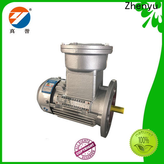 Zhenyu threephase electromotor for chemical industry